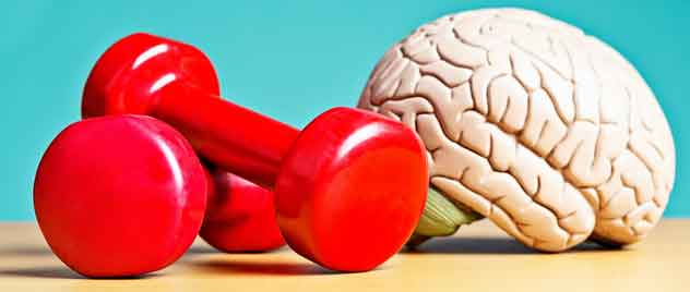 brain fitness fight dementia