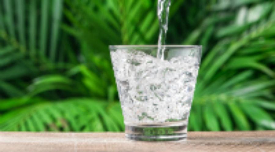H2O: The Health and Vitality Elixir